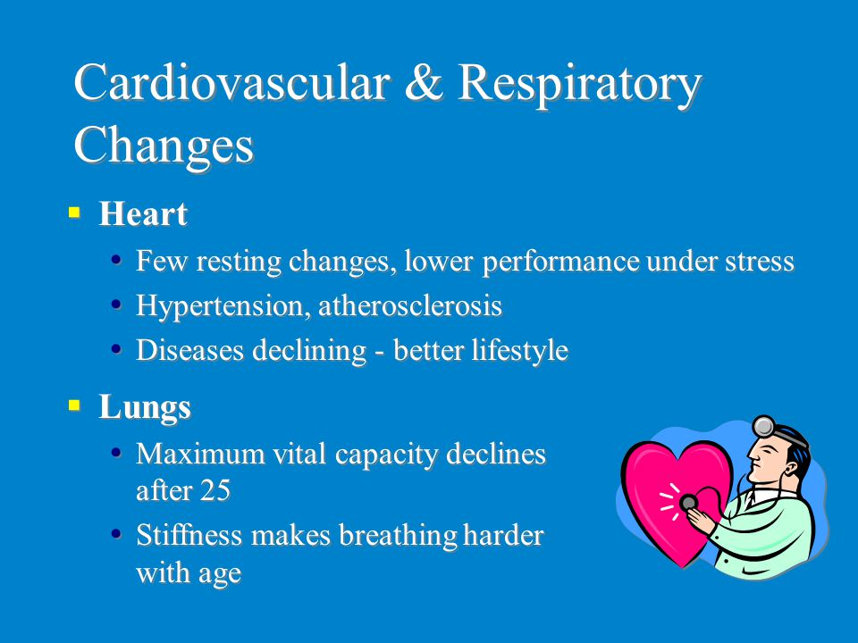 Cardiovascular & Respiratory Changes  Heart  Few resting changes, lower performance under stress  Hypertension, atherosclerosis  Diseases declinin
