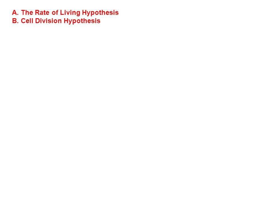 A. The Rate of Living Hypothesis B. Cell Division Hypothesis