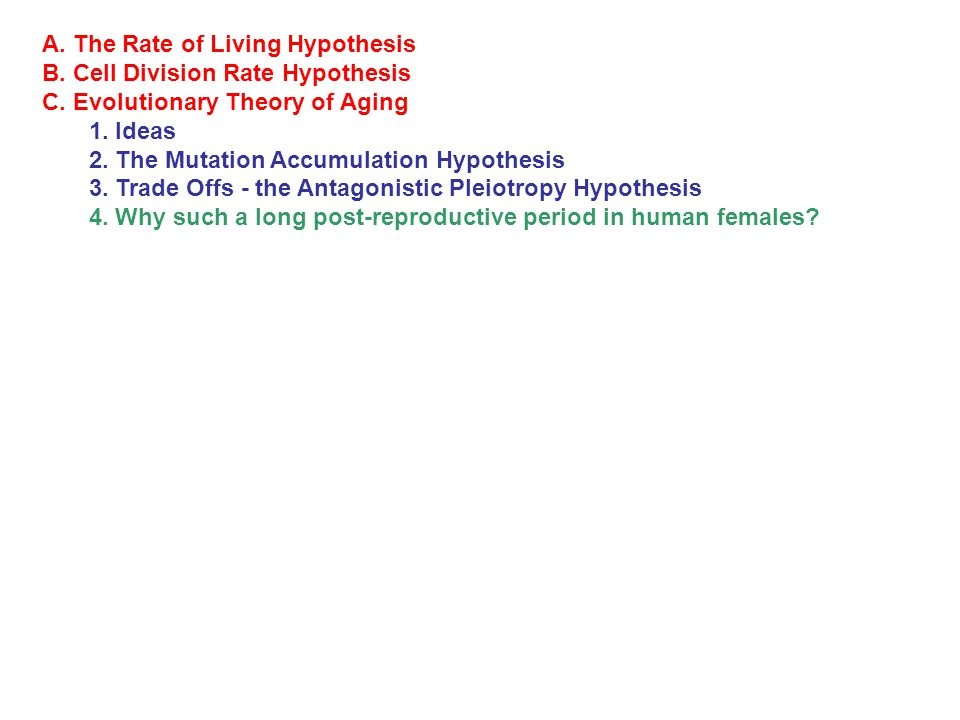 A.The Rate of Living Hypothesis B. Cell Division Rate Hypothesis C.