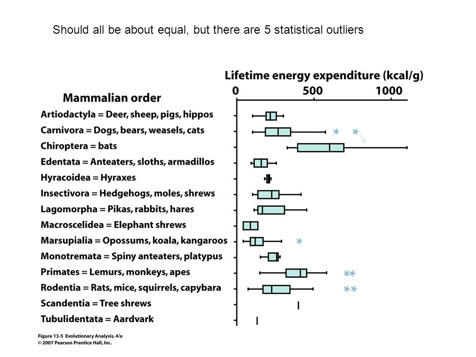 Should all be about equal, but there are 5 statistical outliers
