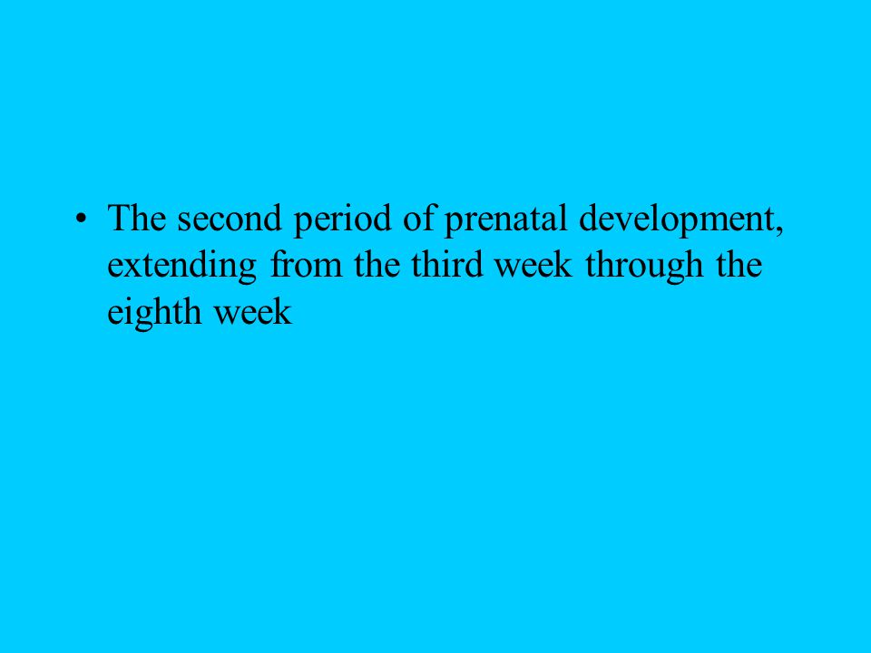 The second period of prenatal development, extending from the third week through the eighth week
