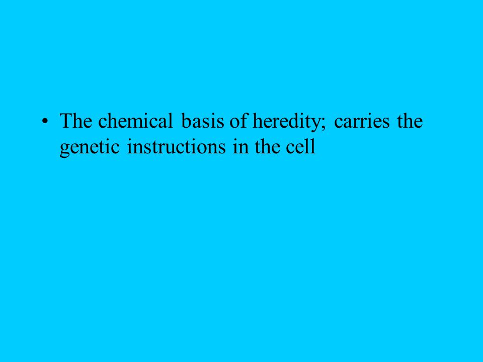 The chemical basis of heredity; carries the genetic instructions in the cell