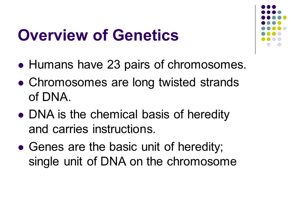 Overview of Genetics Humans have 23 pairs of chromosomes.