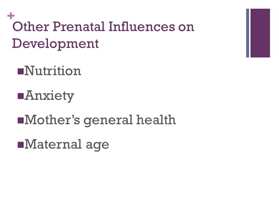 + Other Prenatal Influences on Development Nutrition Anxiety Mother's general health Maternal age