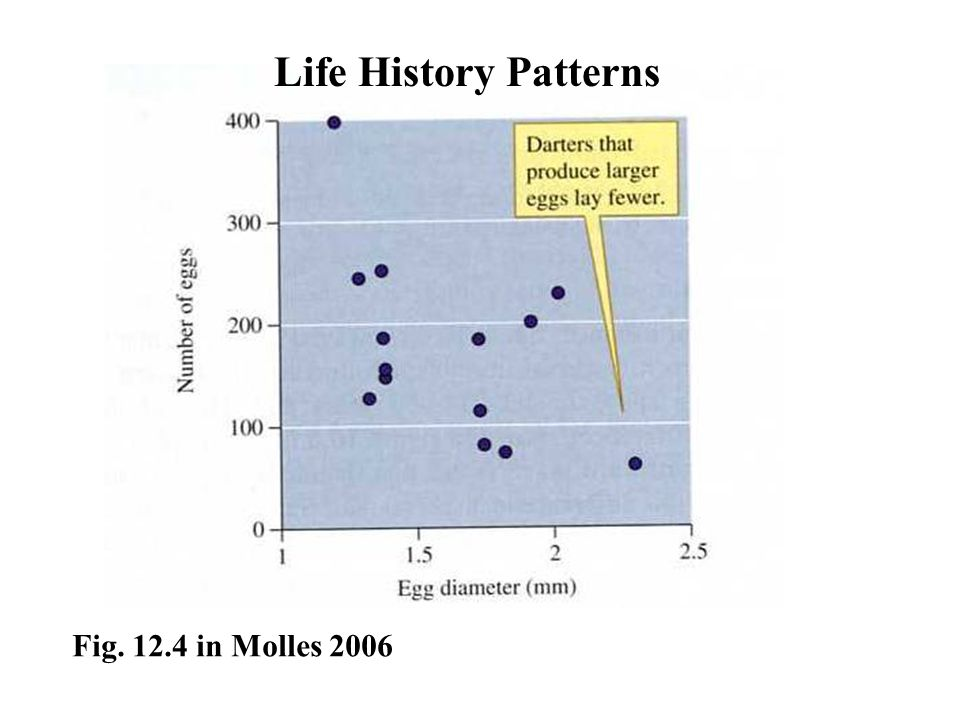 Fig. 12.4 in Molles 2006 Life History Patterns