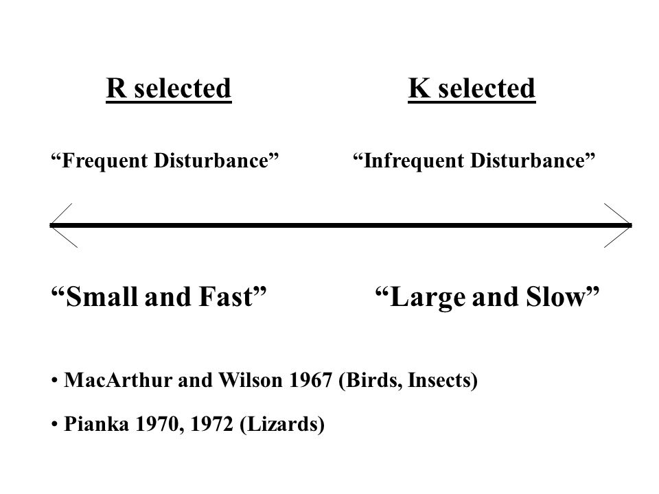 R selectedK selected Small and Fast Large and Slow MacArthur and Wilson 1967 (Birds, Insects) Pianka 1970, 1972 (Lizards) Frequent Disturbance Infrequent Disturbance