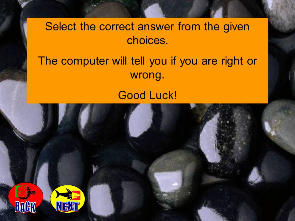 Select the correct answer from the given choices.