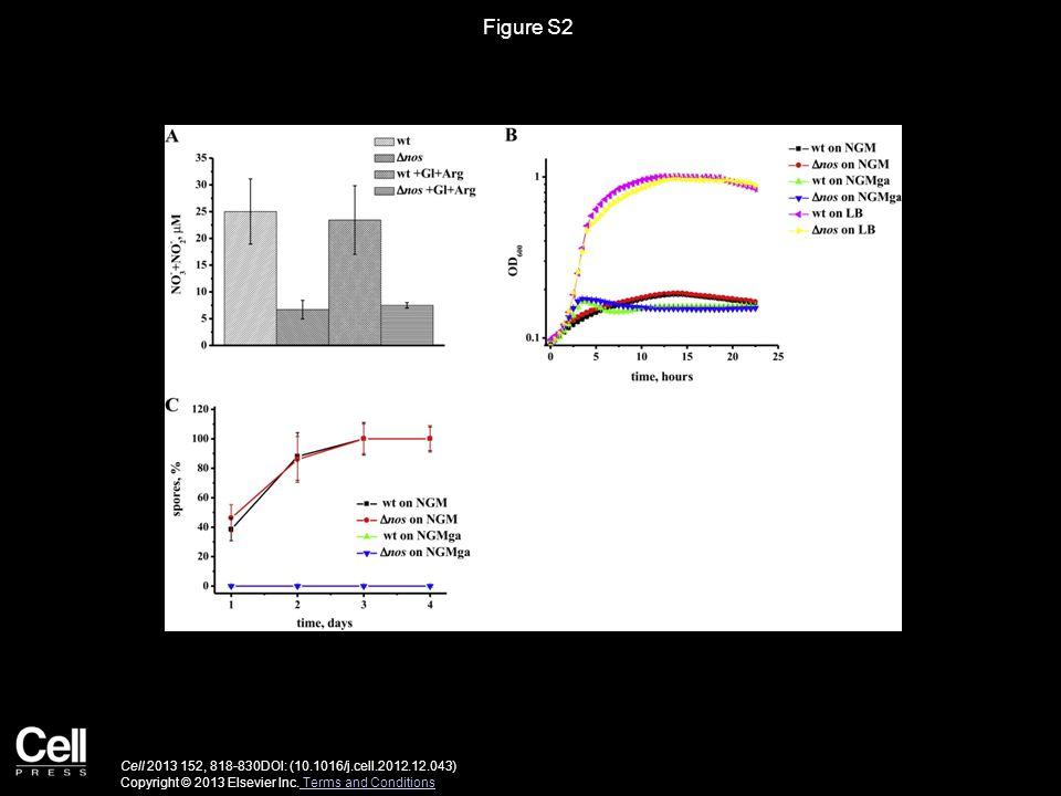 Figure S3 Cell 2013 152, 818-830DOI: (10.1016/j.cell.2012.12.043) Copyright © 2013 Elsevier Inc.