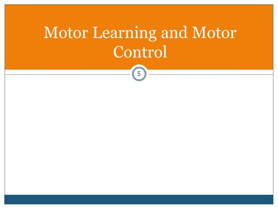 16 Motor Development