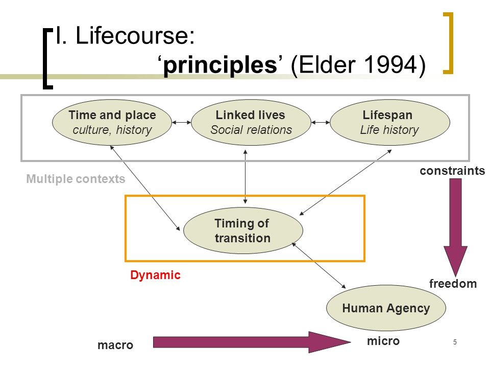 Amandine Masuy October 20085 I. Lifecourse: 'principles' (Elder 1994) Time and place culture, history Lifespan Life history macro micro Linked lives S