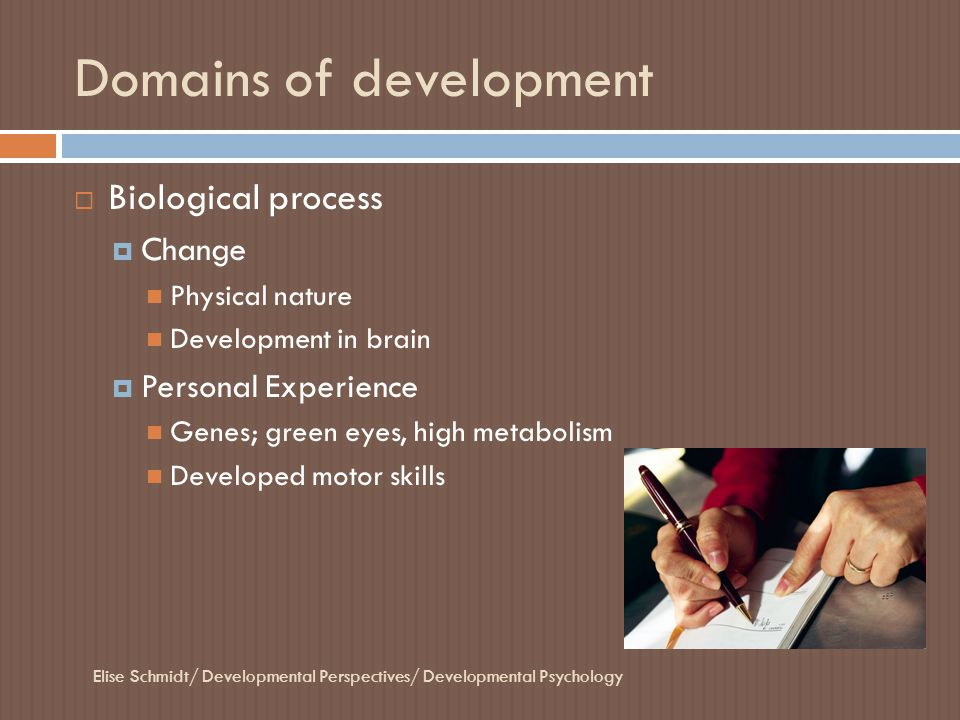 Domains of development  Biological process  Change Physical nature Development in brain  Personal Experience Genes; green eyes, high metabolism Dev