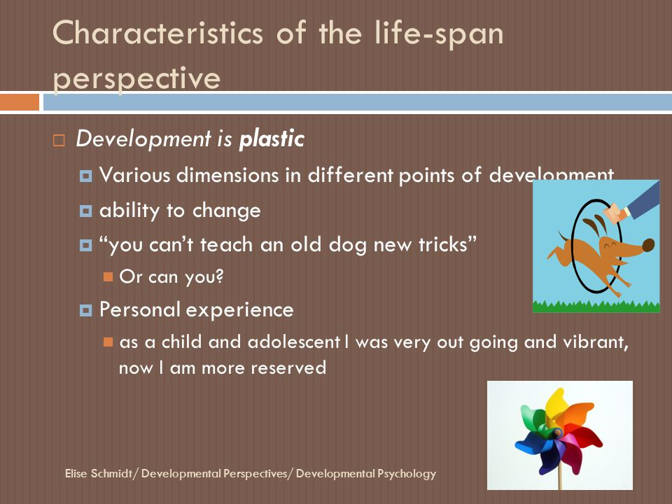Four Concepts of age  Chronological age  Years since birth  Personal Experience 22 years old  Biological Age  Biological health Younger in biological age, longer life expectancy  Personal Experience Smoker; lessens my life expectancy Elise Schmidt/ Developmental Perspectives/ Developmental Psychology