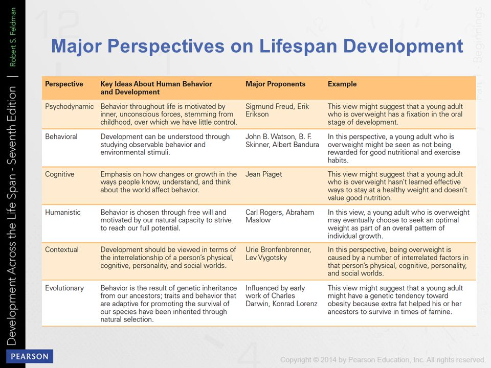 Major Perspectives on Lifespan Development