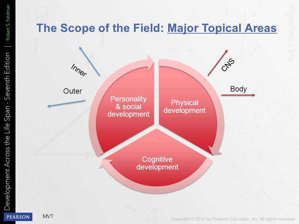 The Scope of the Field: Major Topical Areas Physical development Cognitive development Personality & social development Inner Outer CNS Body MVT