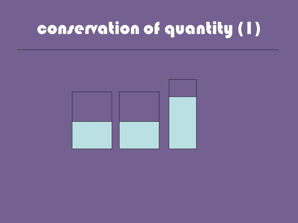 conservation of quantity (1)