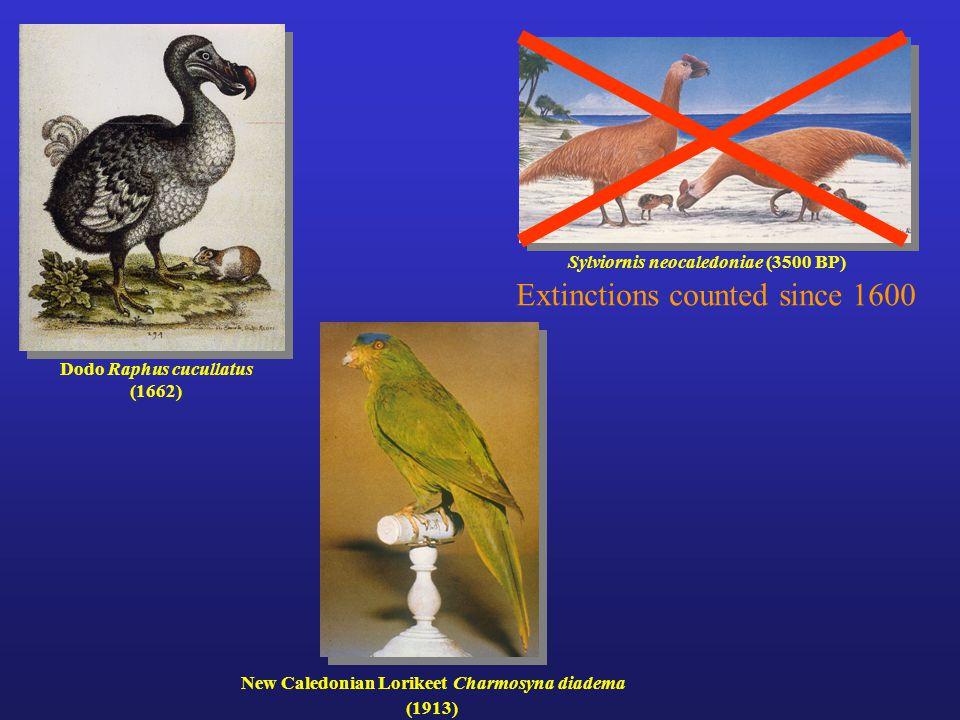 Dodo Raphus cucullatus (1662) Sylviornis neocaledoniae (3500 BP) New Caledonian Lorikeet Charmosyna diadema (1913) Extinctions counted since 1600