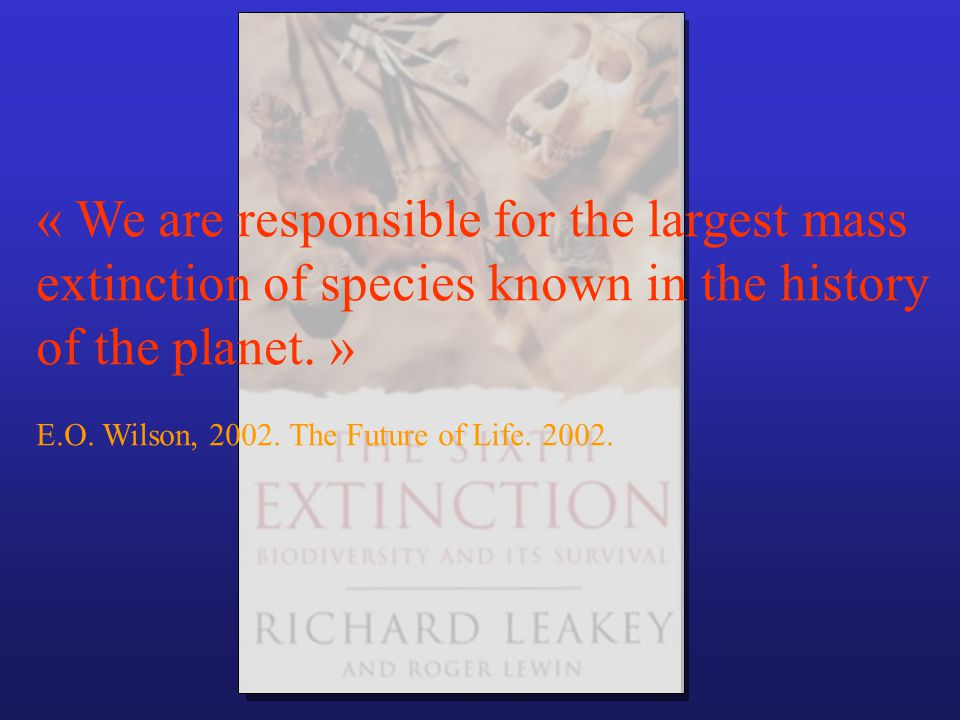 « We are responsible for the largest mass extinction of species known in the history of the planet. » E.O. Wilson, 2002. The Future of Life. 2002.