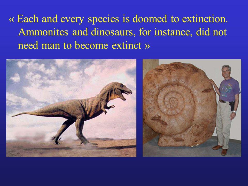Species duration in the paleontological records Average species lifespan (million years) Mammals1 Silurian graptolites2 Echinodermata6 Planctonic foraminifera7 Cenozoic bivalves10