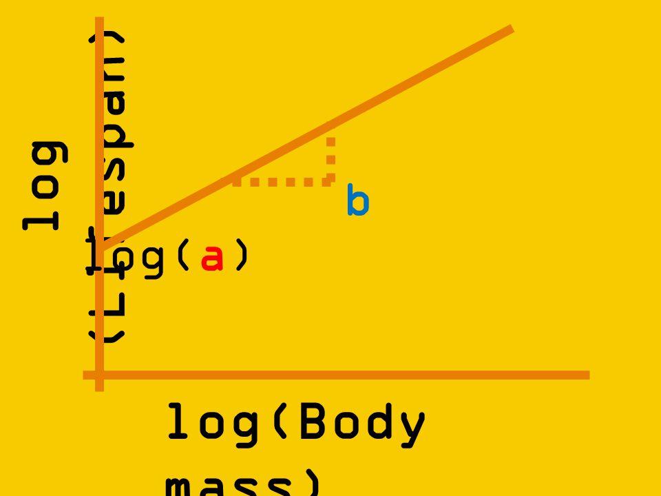 log (Lifespan) log(Body mass) log(a) b