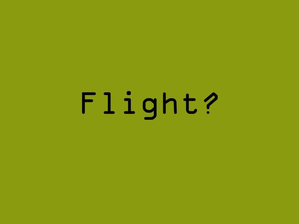 Flight?