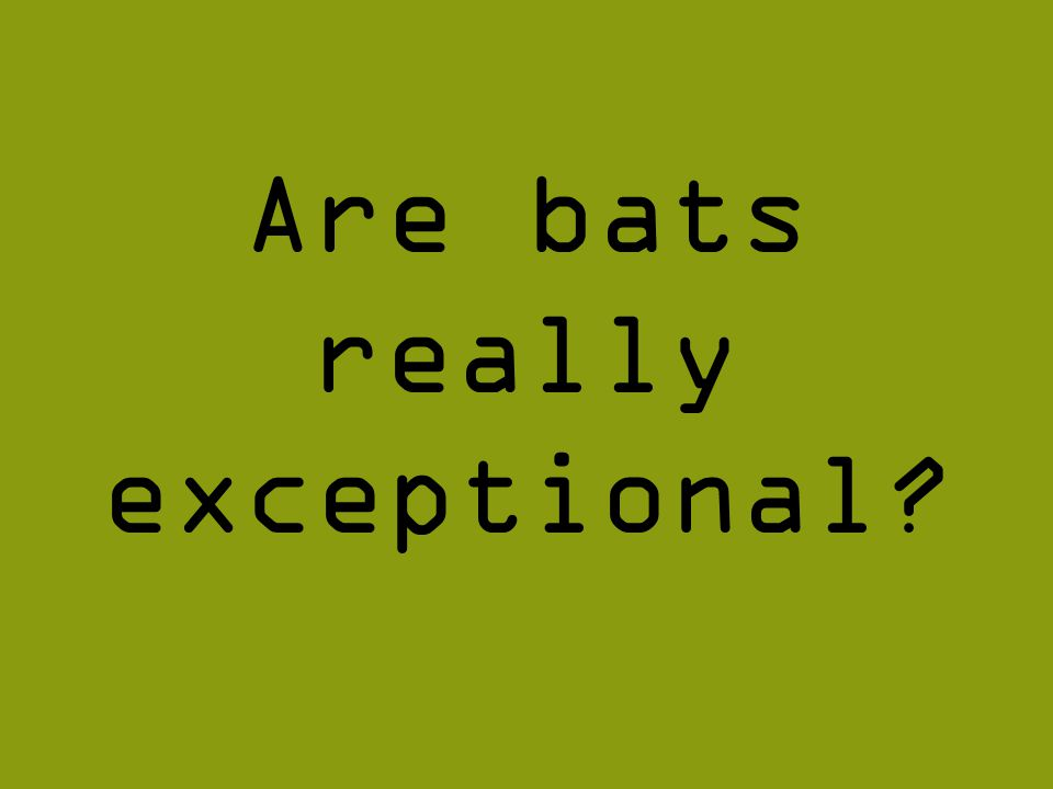 Are bats really exceptional