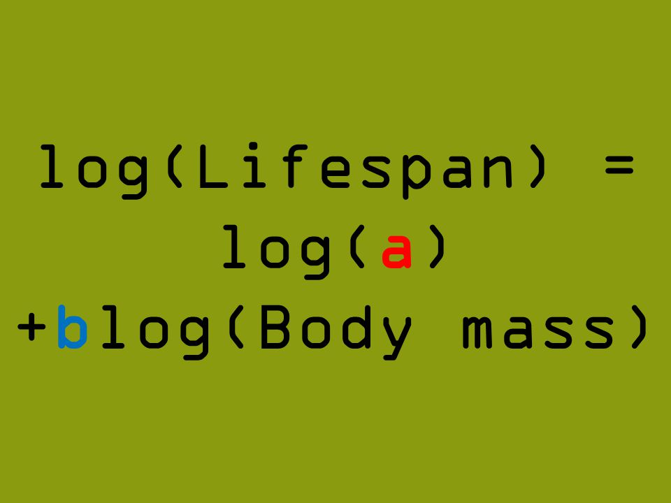 log(Lifespan) = log(a) +blog(Body mass)