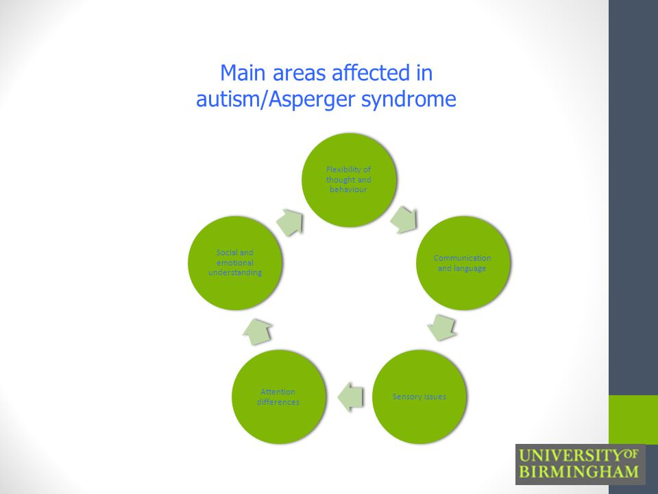 Flexibility of thought and behaviour Communication and language Sensory issues Attention differences Social and emotional understanding Main areas affected in autism/Asperger syndrome