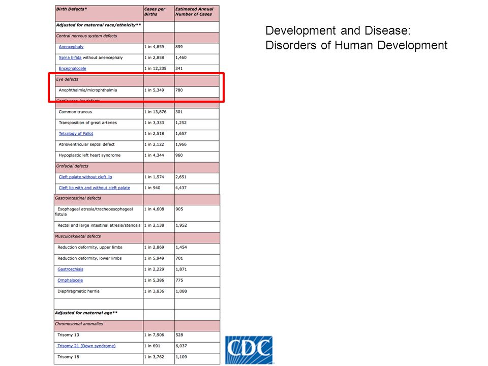 Development and Disease: Disorders of Human Development