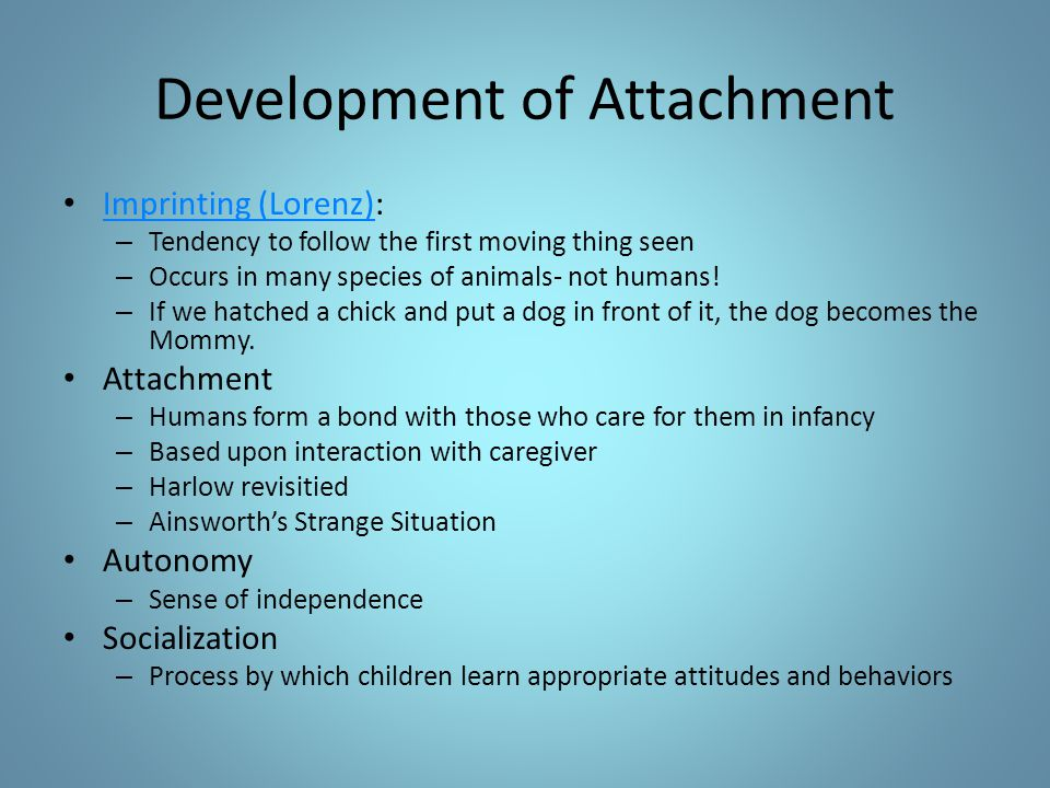 Development of Attachment Imprinting (Lorenz): Imprinting (Lorenz) – Tendency to follow the first moving thing seen – Occurs in many species of animal