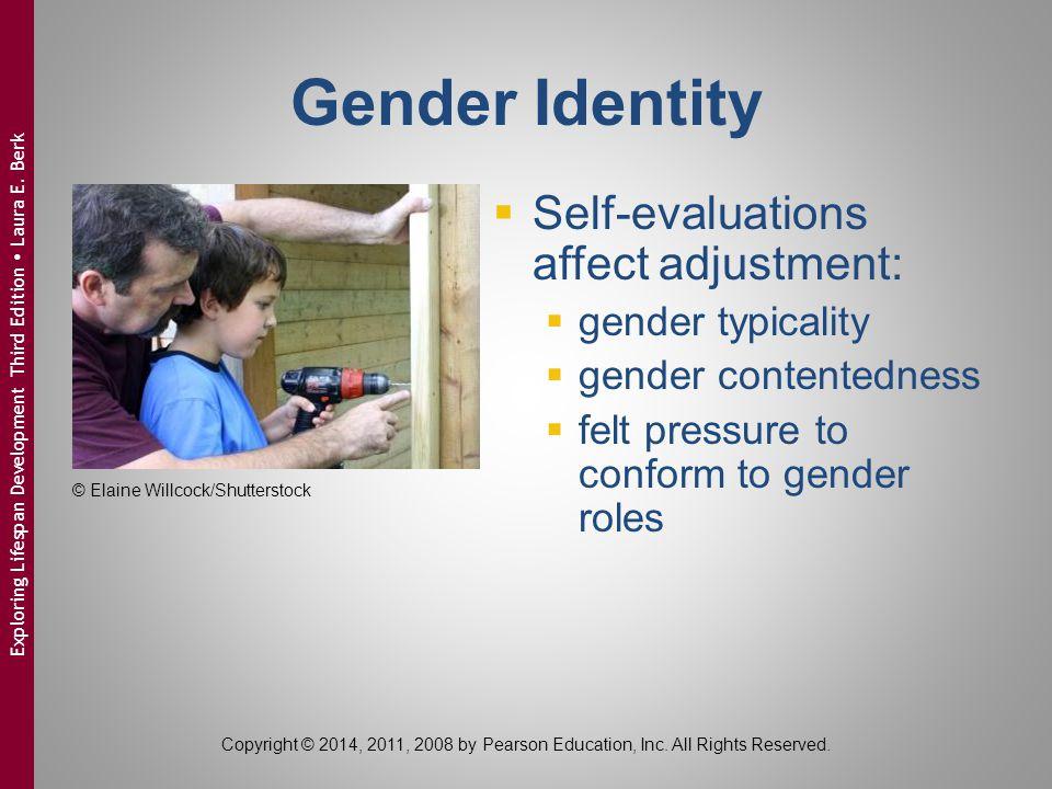 Gender Identity  Self-evaluations affect adjustment:  gender typicality  gender contentedness  felt pressure to conform to gender roles © Elaine W