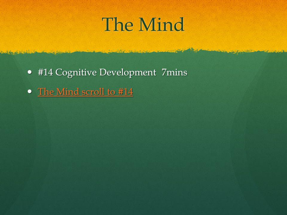 The Mind #14 Cognitive Development 7mins #14 Cognitive Development 7mins The Mind scroll to #14 The Mind scroll to #14 The Mind scroll to #14 The Mind scroll to #14