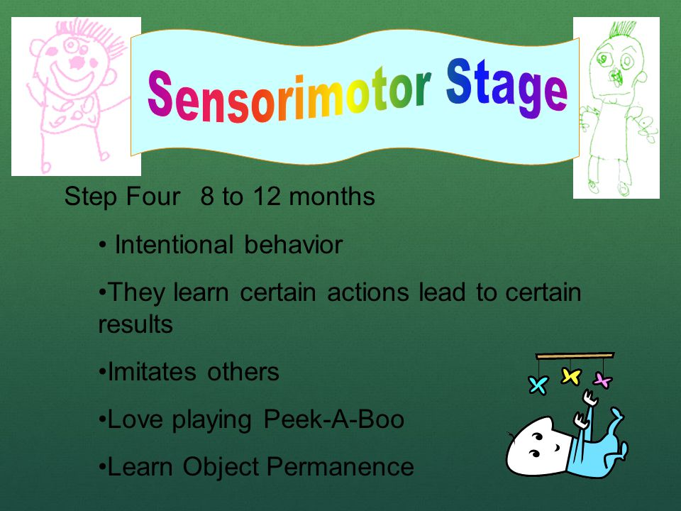 Step Four 8 to 12 months Intentional behavior They learn certain actions lead to certain results Imitates others Love playing Peek-A-Boo Learn Object