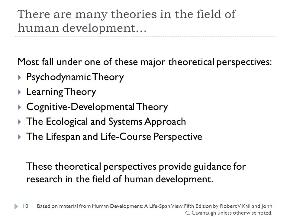 There are many theories in the field of human development… 10 Most fall under one of these major theoretical perspectives:  Psychodynamic Theory  Learning Theory  Cognitive-Developmental Theory  The Ecological and Systems Approach  The Lifespan and Life-Course Perspective These theoretical perspectives provide guidance for research in the field of human development.