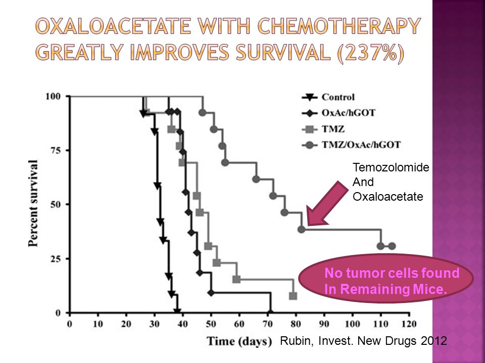 Temozolomide And Oxaloacetate Rubin, Invest. New Drugs 2012 No tumor cells found In Remaining Mice.
