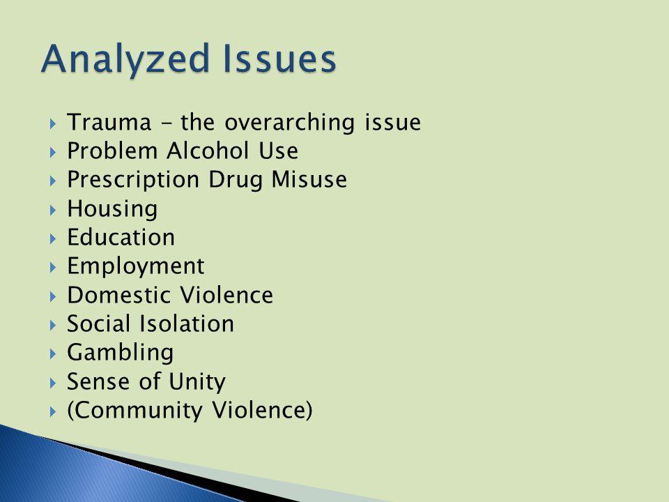  Trauma - the overarching issue  Problem Alcohol Use  Prescription Drug Misuse  Housing  Education  Employment  Domestic Violence  Social Isolation  Gambling  Sense of Unity  (Community Violence)