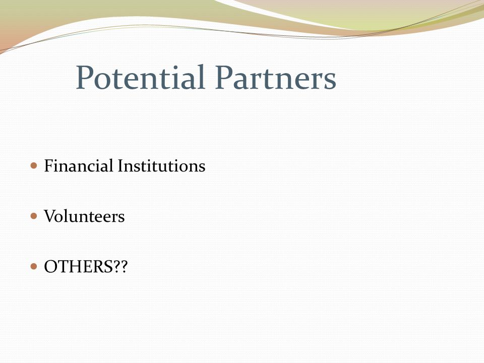 Potential Partners Financial Institutions Volunteers OTHERS