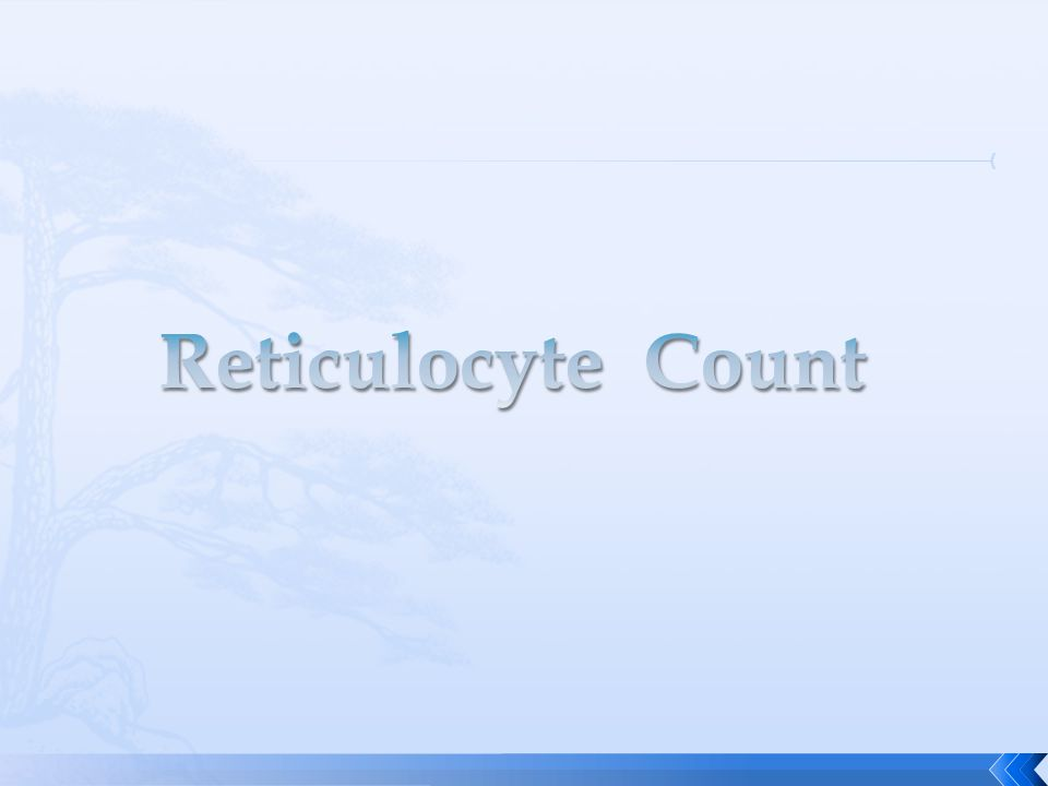  immature RBCs that contain remnant cytoplasmic ribonucleic acid (RNA) and organelles such as mitochondria and ribosomes.