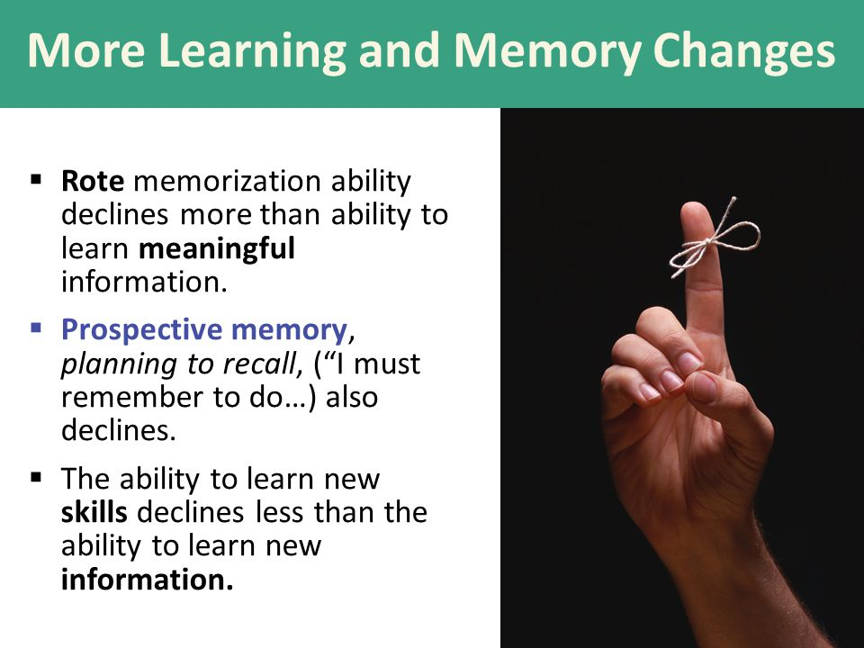 More Learning and Memory Changes  Rote memorization ability declines more than ability to learn meaningful information.  Prospective memory, plannin