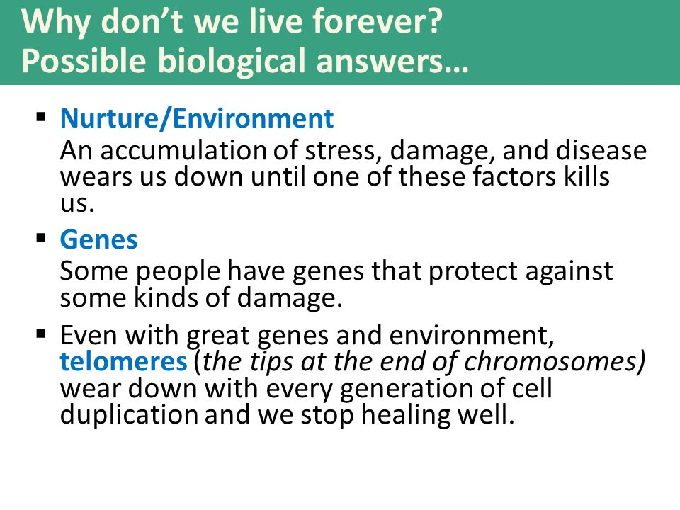Why don't we live forever? Possible biological answers…  Nurture/Environment An accumulation of stress, damage, and disease wears us down until one o