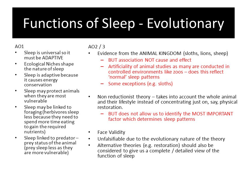 Functions of Sleep - Evolutionary AO1 Sleep is universal so it must be ADAPTIVE Ecological Niches shape the nature of sleep Sleep is adaptive because it causes energy conservation Sleep may protect animals when they are most vulnerable Sleep may be linked to foraging (herbivores sleep less because they need to spend more time eating to gain the required nutrients) Sleep linked to predator – prey status of the animal (prey sleep less as they are more vulnerable) AO2 / 3 Evidence from the ANIMAL KINGDOM (sloths, lions, sheep) – BUT association NOT cause and effect – Artificiality of animal studies as many are conducted in controlled environments like zoos – does this reflect 'normal' sleep patterns – Some exceptions (e.g.
