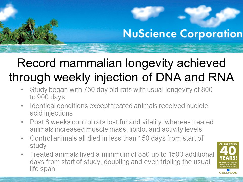Record mammalian longevity achieved through weekly injection of DNA and RNA Study began with 750 day old rats with usual longevity of 800 to 900 days