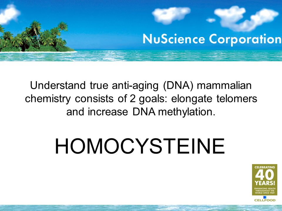 Understand true anti-aging (DNA) mammalian chemistry consists of 2 goals: elongate telomers and increase DNA methylation. HOMOCYSTEINE