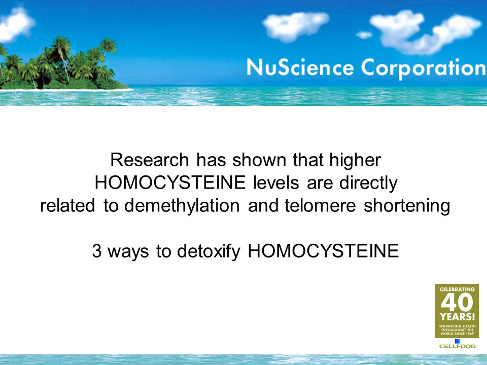 Research has shown that higher HOMOCYSTEINE levels are directly related to demethylation and telomere shortening 3 ways to detoxify HOMOCYSTEINE