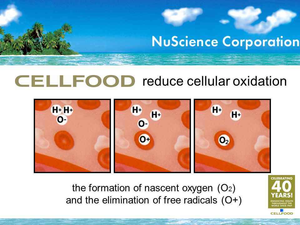 the formation of nascent oxygen (O 2 ) and the elimination of free radicals (O+) reduce cellular oxidation