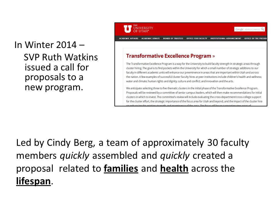 In Winter 2014 – SVP Ruth Watkins issued a call for proposals to a new program.