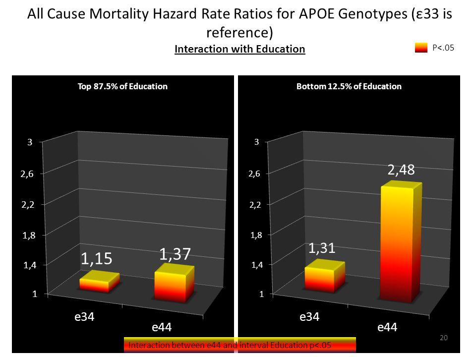 All Cause Mortality Hazard Rate Ratios for APOE Genotypes (ε33 is reference) Interaction with Education P<.05 Interaction between e44 and interval Education p<.05 20