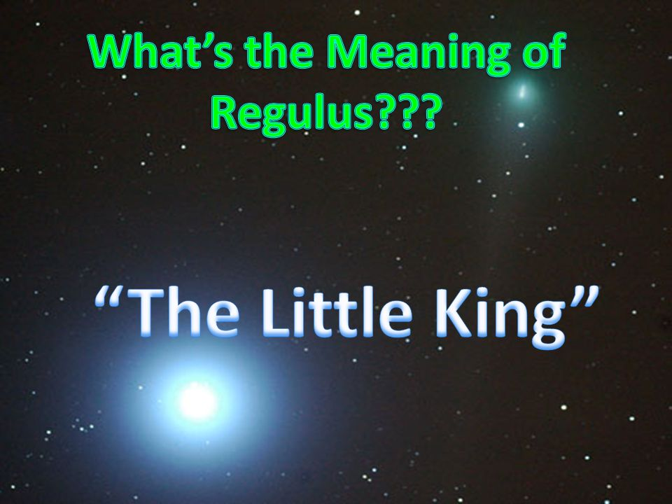 REGULUS BY: Emily Newcomb