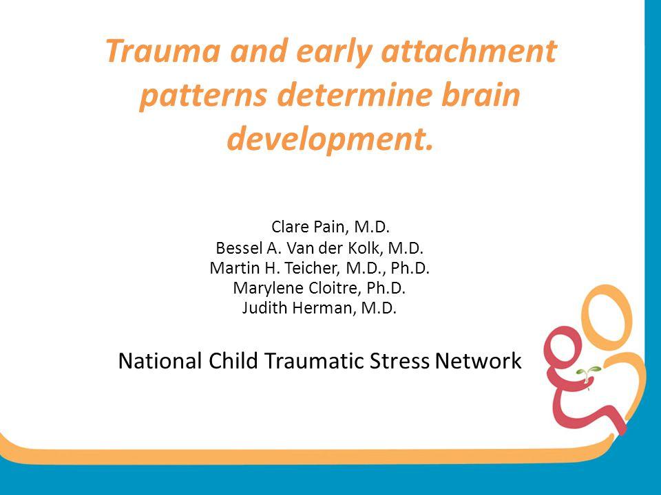 Trauma and early attachment patterns determine brain development.