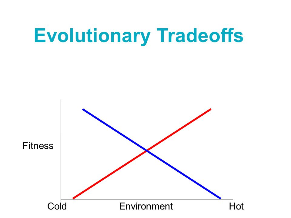 Evolutionary Tradeoffs Environment Fitness ColdHot
