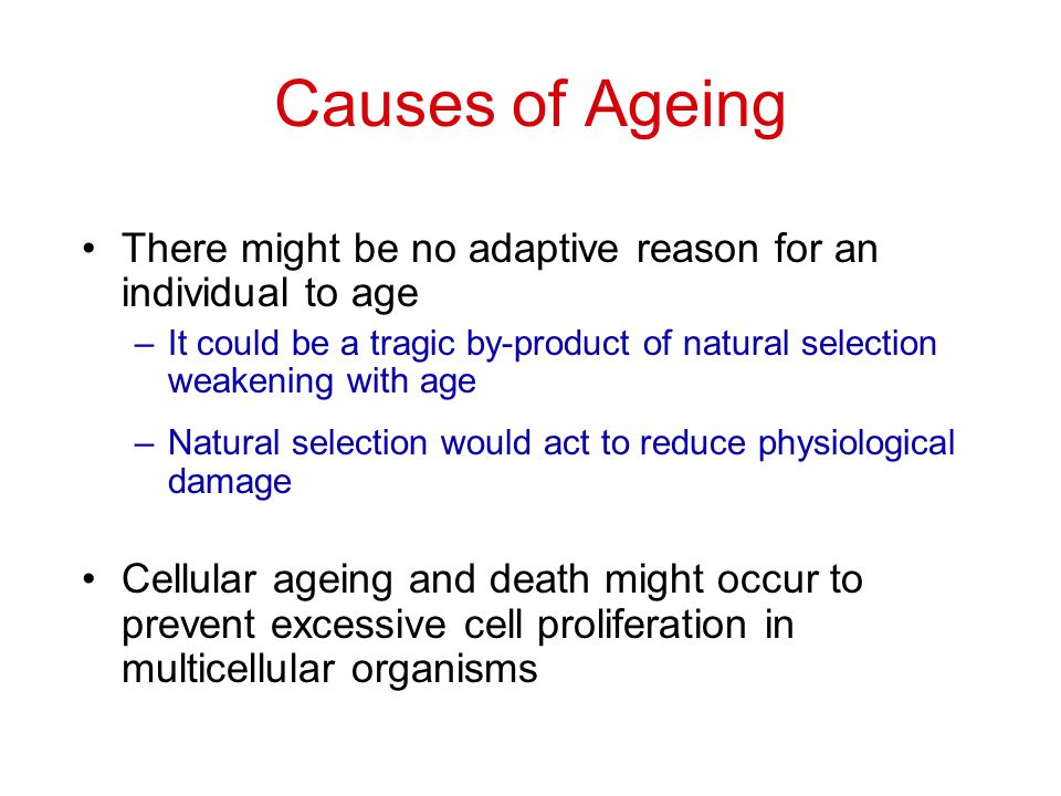 Causes of Ageing There might be no adaptive reason for an individual to age –It could be a tragic by-product of natural selection weakening with age –